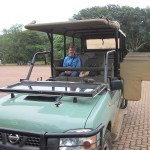 Game drive vehicle with a wild animal inside