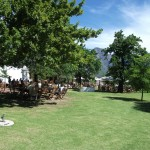 Tasting wine under the trees at Solms Delta estate
